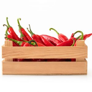 Long red pepper