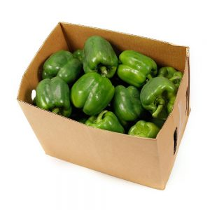 Green Capsicum box