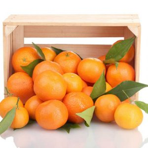Orange Valencia box