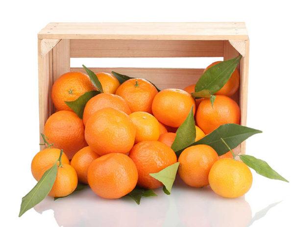 Orange Valencia box